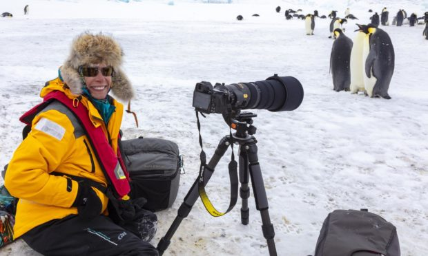 Dee Ann Pederson photographing Emperor Penguins at Snow Hill Island colony, Antarctica