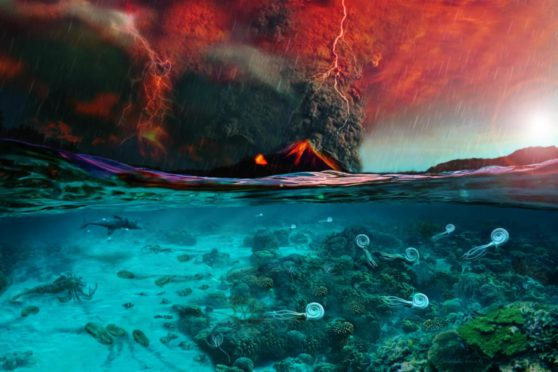 An illustration depicting the onset of the Permian-Triassic mass extinction based on findings of Jurikova et al. (2020). Ocean acidification and vanishing marine life in the surface ocean caused by a large release of volcanic CO2 from Siberian Traps. Illustrated by Dawid Adam Iurino (PaleoFactory, Sapienza University of Rome) for Jurikova et al. (2020)..