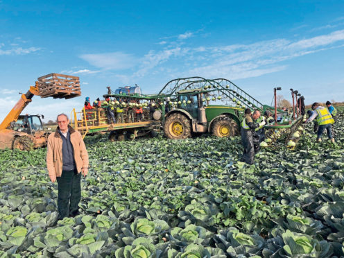 DISILLUSIONED: Vegetable and potato grower John Bratley says many potato growers want a ballot on the levy.