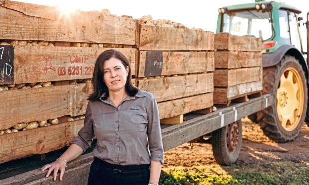 International potato growers will  speak at this years online seed potato event.