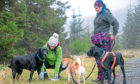 Gayle Ritchie and Angie Gray of K9 Trax with their dogs in Glen Isla. The picture shows Gayle pressing her dog's paw into a clay mould.