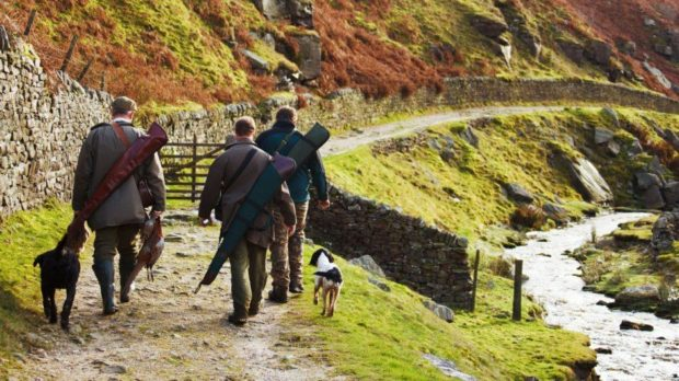 "The BASC says country sports tourism businesses are at ""crisis point""."