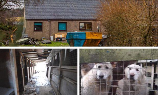 The alleged puppy farm near Glenalmond.