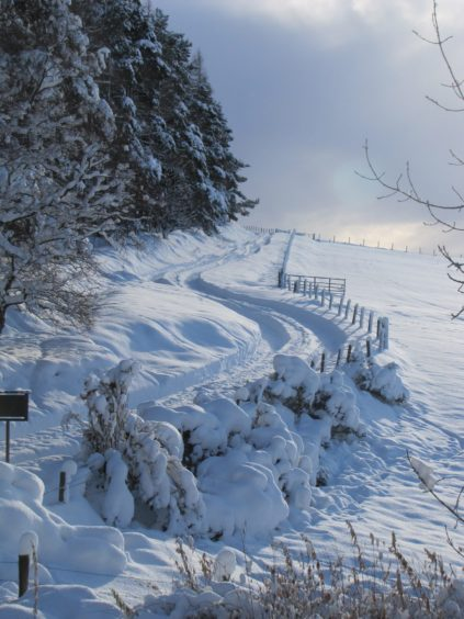 Snow in Scotland. The snow in the countryside around Carnoustie.