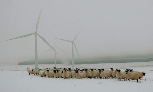 Save Our Hills are planning on uniting local windfarm pressure groups in Perthshire.
