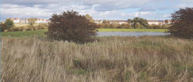 The site in question at Motray Park.