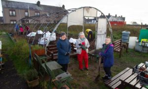 Food is Free founders at the destroyed polytunnel. From left: gardens Laura-Mae Kennedy, Mibby McAinsh, and Laura Tierney