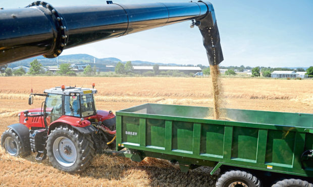 ALARM: A no-deal Brexit could severely hit Scots barley producers, says the report.