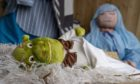 Villagers were surprised to find Shrek at the centre of their nativity scene.