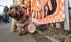 Shipoo 'Delboy' in united colours outside Tannadice after McLean's death