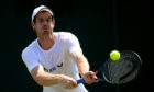 Some form of coaching for sports such as tennis should continue online after the pandemic, researchers say. Pictured: Scottish tennis star Andy Murray