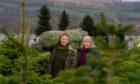 Kelly and Jean McIntyre of Sholach Christmas Tree Farm near Blairgowrie.