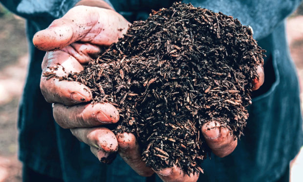 MUCKING IN: Soil health is one of the topics for discussion at the virtual workshops.