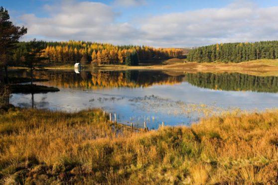Auchintaple Loch, Cateran Trail.