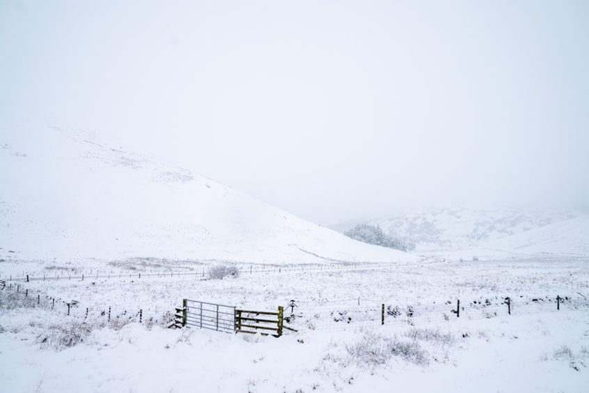 Snowfall in Perthshire on Thursday morning.