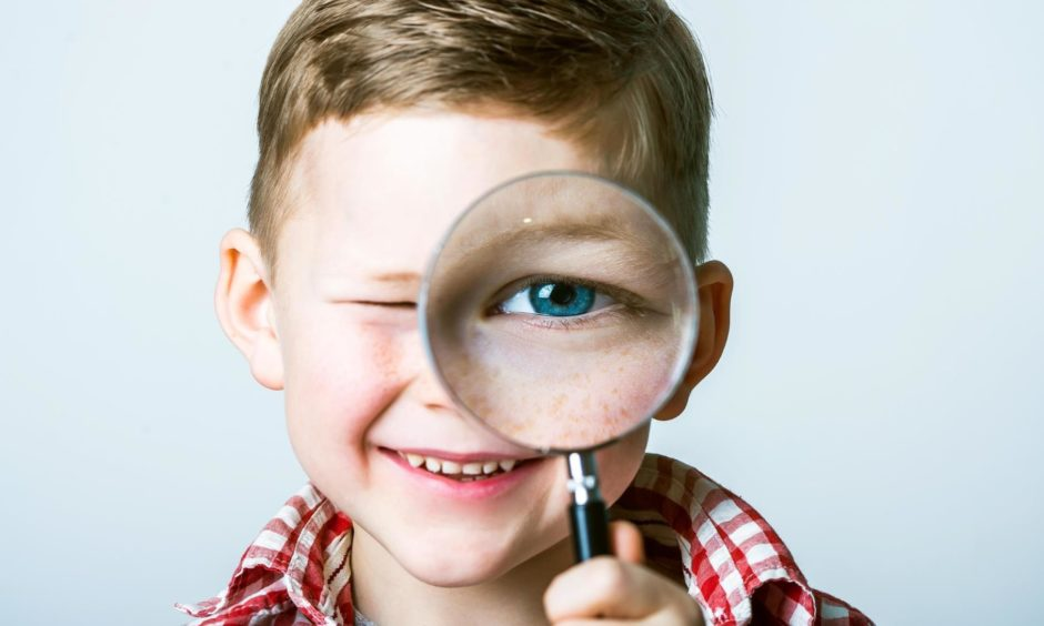 scottish school inspections