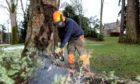Head gardener Brian Cunningham tidies up the gardens