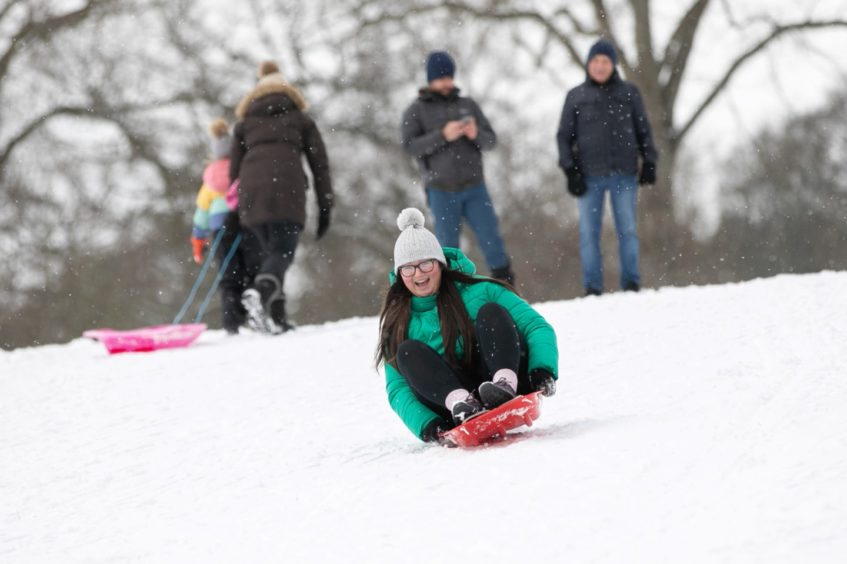 Camperdown Country Park sledgers.