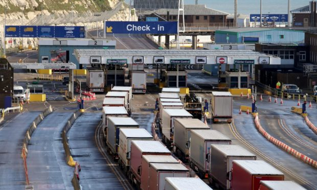 Lorries queue for the frontier control area at the Port of Dover.