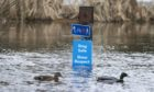 Ducks swim past a sign deep in floodwater on the cycle path on Perth's North Inch