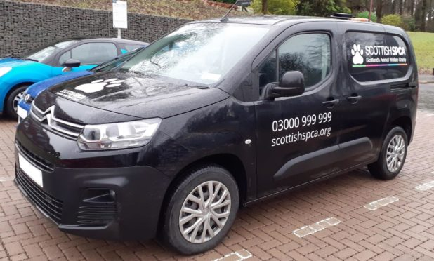 Image shows official Scottish SPCA vans which are coloured black, not white like the hoax vans that are reportedly operating in Perth and Kinross.