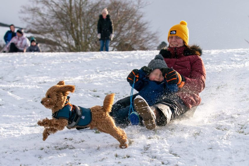 Kirsty Wishart and Nathan Corcoran race down the slopes chased by Ozzy the dog.