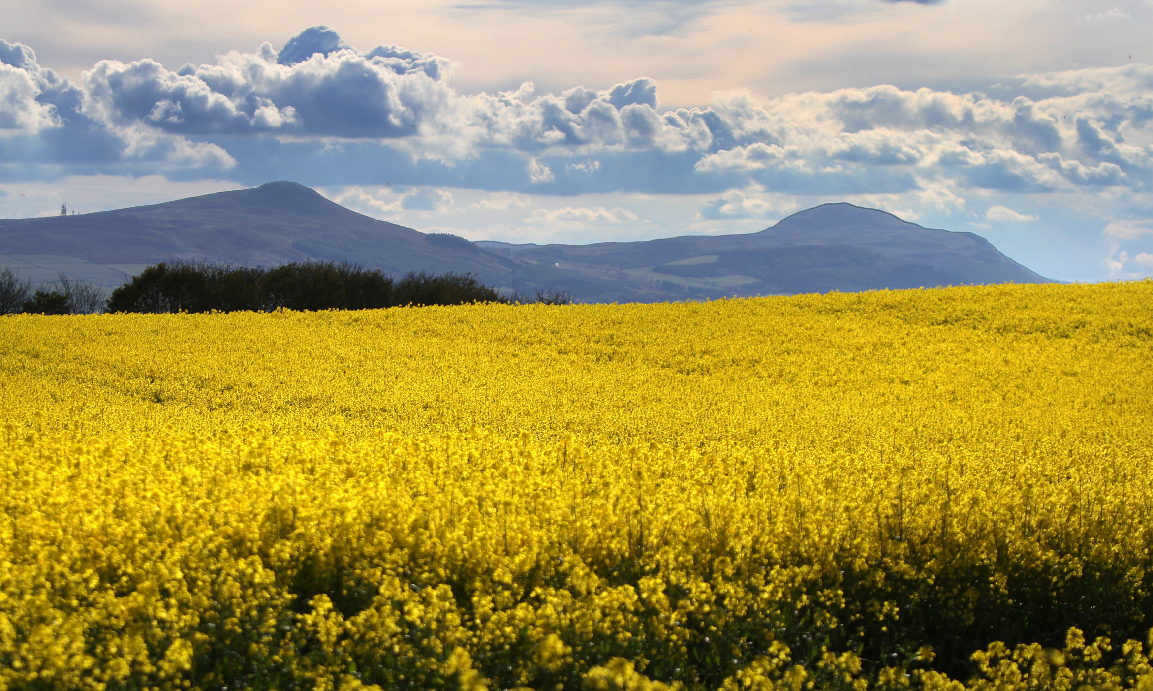 The Lomond Hills viewed from the Howe of Fife