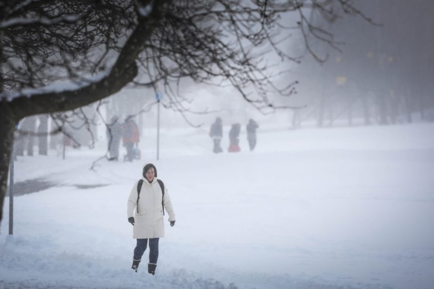 A lady walks down a path in a park on South Road, Lochee.