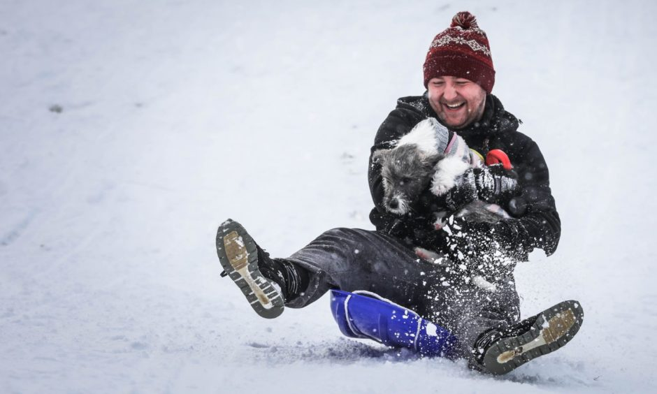 Darren Mackie with pup Shelby on a sledge in Dundee.