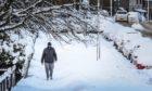 A man walks in deep snow on Fountainbleau Drive, Dundee, on Wednesday February 10.