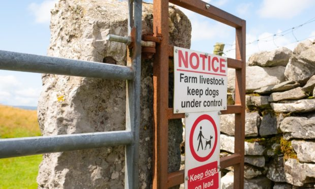 The problem extends to stray dogs as well as those which are off the lead when their owners are present.