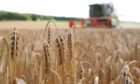 FIELDWORK: Scientists want more information on crops.