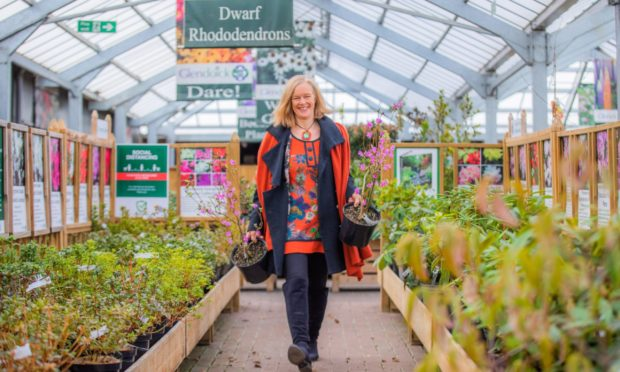 Glendoick co-owner Jane Cox wants to see garden centres made essential again.