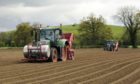GROUNDED: Discussion is growing on how to kick-start the export of Scottish seed tatties to Europe.