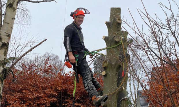 Graeme Ogg, owner of Timber Tree Surgery.
