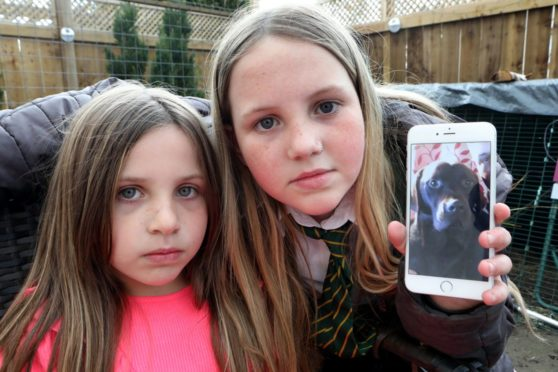 Jessica, 10,& Stevie-Amber, 6, are desperate to get Rocco home.