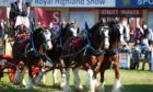 The Royal Highland Showcase will be open to entrants across the UK.