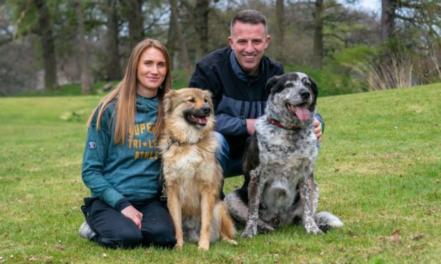 Dog rescue Dundee