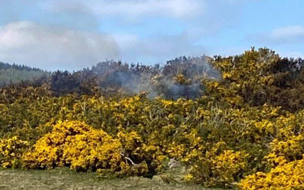 Lochore Meadows fire