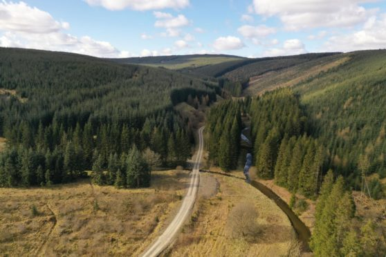 Ramsaygrain East Forests is for sale for offers over £14m.