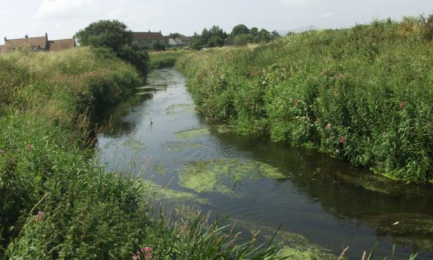 River Eden toxic spill