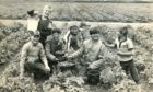 A group of young boys enjoying their day of berry picking at the Star Inn Farm, Longforgan, in July 1985.