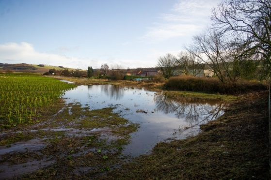 Scottish Water were prosecuted and fined for a spillage of toxic chemicals into the Rover Eden in Fife.