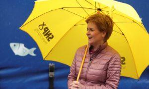 Nicola Sturgeon Holyrood majority
