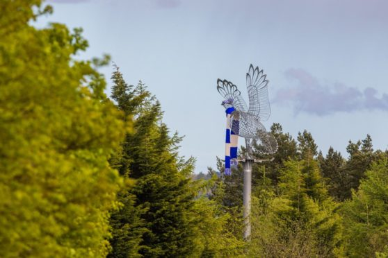 The grouse sculpture has been decked out in St Johnstone colours.