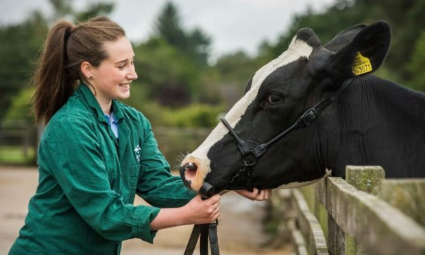 HELPING HAND: SRUC says the new vet school would help solve skills shortages in rural practices across Scotland.