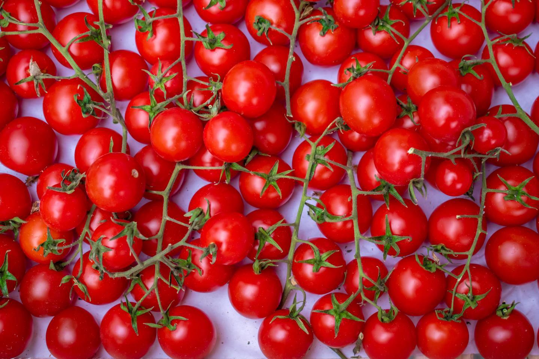 Harvest cherry tomatoes.
