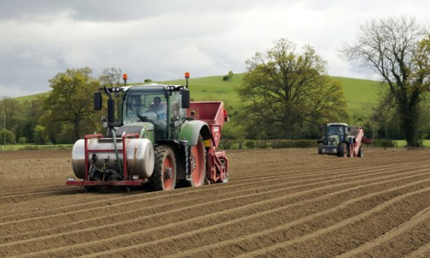 AHDB is winding down its potato and horticulture activities.