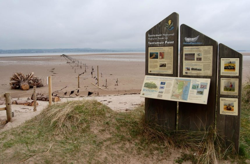 Information boards at the north entrance to Tentsmuir nature reserve
