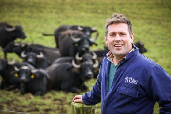 Steve Mitchell of the Buffalo Farm.
